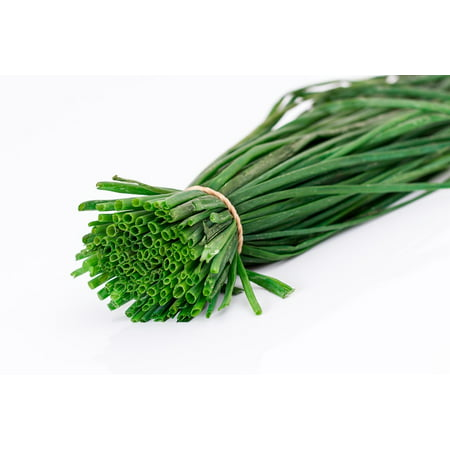 Canvas Print Salad Onion Flavoring Spring Onion Green Onion Stretched Canvas 10 x 14 Cl Norwell Onion Post Light