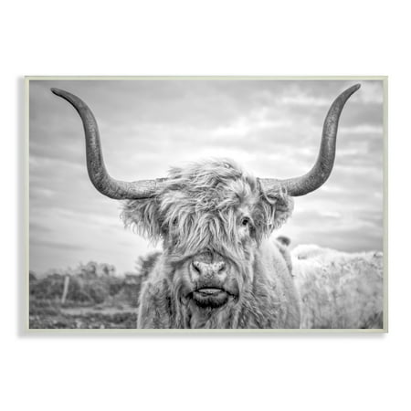 The Stupell Home Decor Collection Black and White Highland Cow Photograph Wall Plaque Art, 10 x 0.5 x 15