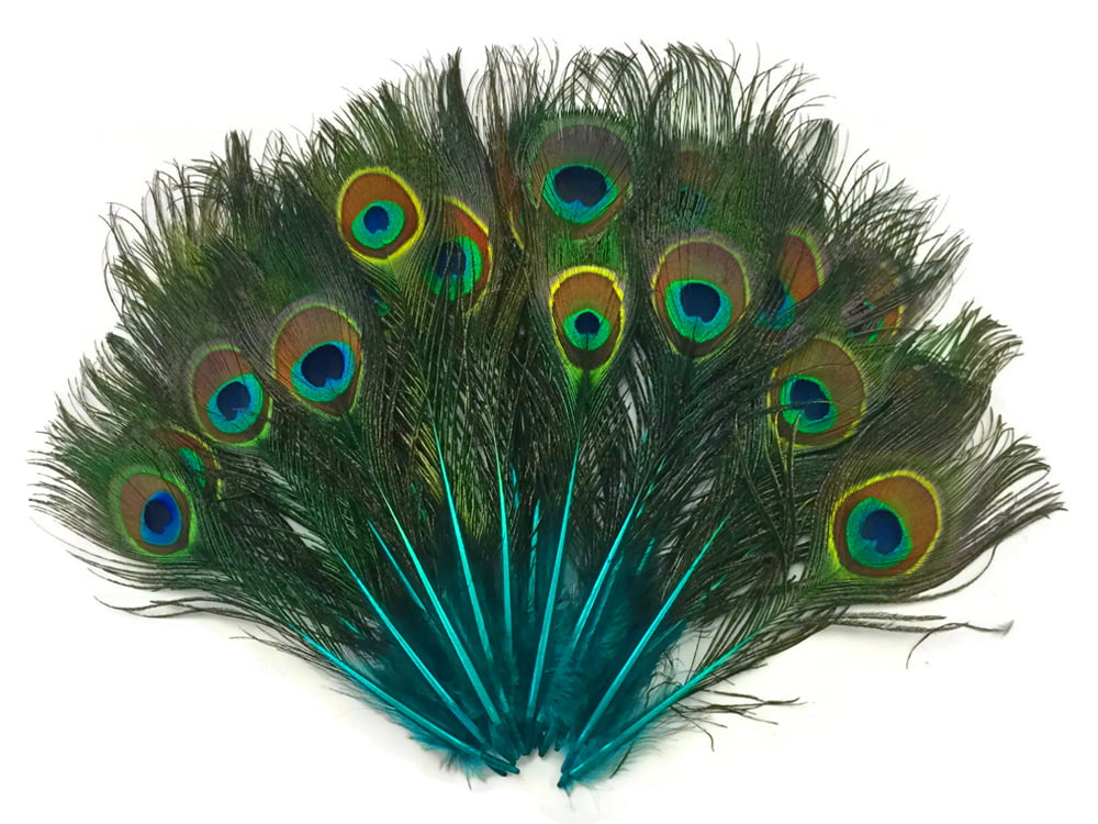 """US Seller 25 B Quality Dusty Green Peacock Eye Feather Stems 12-14/"""""""