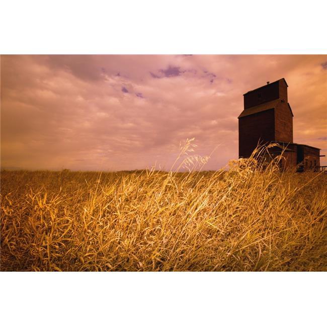 Posterazzi DPI1770208LARGE Grain Elevator & Crop Poster Print by Darren Greenwood, 34 x 22 - Large - image 1 de 1