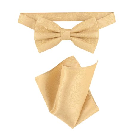 Vesuvio Napoli BowTie Gold Color Paisley Color Mens Bow Tie & Handkerchief