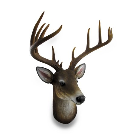 - 12 Point Buck Deer Head Bust Wall Hanging