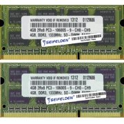 Seifelden 8GB (2X4GB) Memory RAM for IBM IdeaPad Y430-2781-Others DDR3 Laptop Memory Upgrade