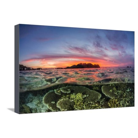 Half above and half below view of the Komodo Diving Resort at sunset, Sebayur Island, Indonesia Stretched Canvas Print Wall Art By Michael
