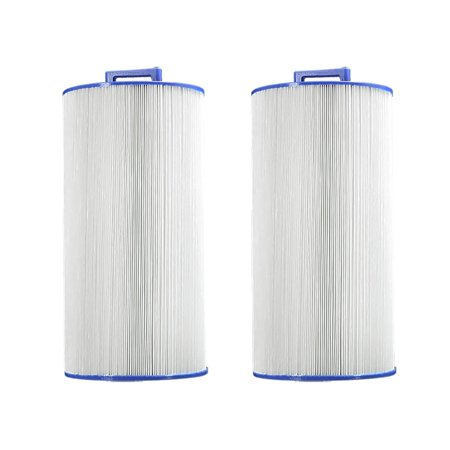 Pleatco PCD100W Pool & Spa Replacement Filter Cartridge for Caldera 100 (2 Pack) ()