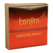 banjira Indian Santoor String Set