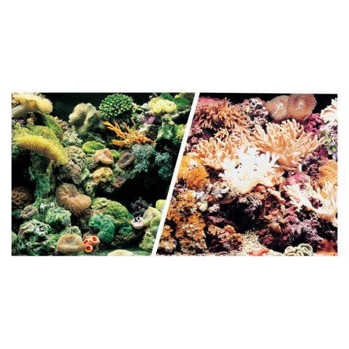 """Marina Saltwater, 18""""x 25' Aquarium Background, Marine Reef Coral by Hagen"""