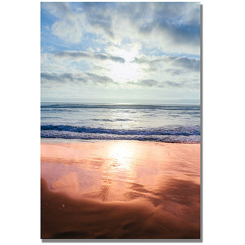 "Trademark Fine Art ""Costal Reflections III"" Canvas Wall Art by Ariane Moshayedi"