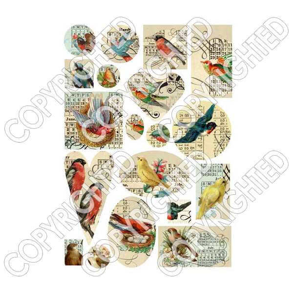 "Nunn Design Collage Sheet ""Various Birds"" For Scrapbook - Fits Patera"