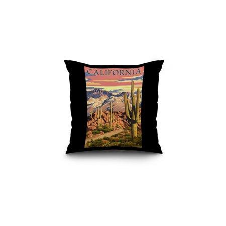 California - Desert Trail Scene - Lantern Press Photography (16x16 Spun Polyester Pillow, Black Border) (Desert Scene)