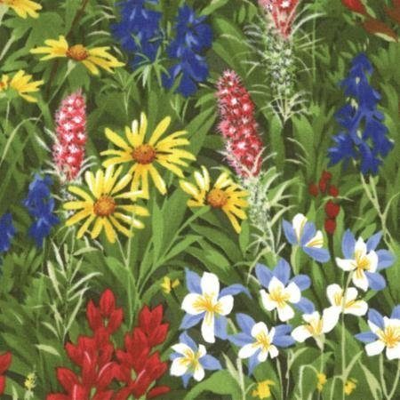 Wildflowers Basics~Summer~32361-11 Cotton Fabric by Moda
