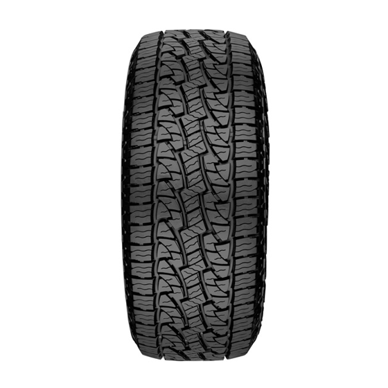 22a8352f1c673 Nexen Roadian AT Pro RA8 All-Terrain Tire - LT285/75R17 E 10ply ...