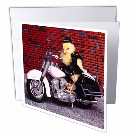 3dRose Funny Biker Chick, Greeting Cards, 6 x 6 inches, set of 6 Biker Greeting Cards