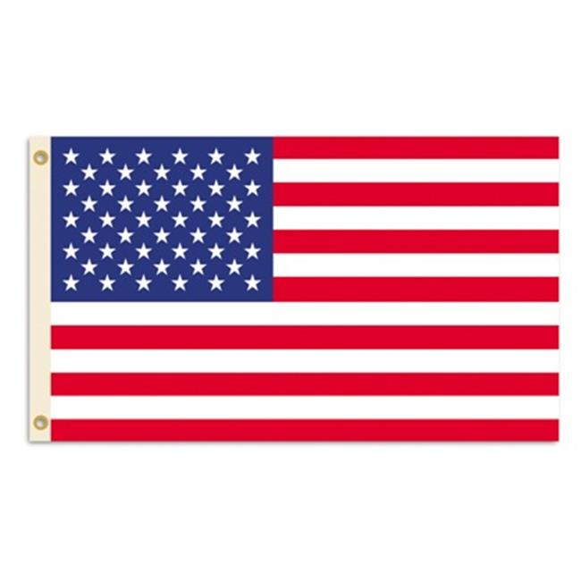 BSI PRODUCTS  11111 3 Ft.  X 5 Ft.  Flag with Grommets - USA