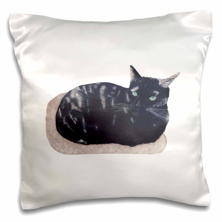 3dRose Painting of a Tortoise Shell Cat Laying in a Beige Cat Bed - Pillow Case, 16 by -