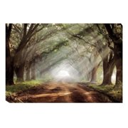 Artistic Home Gallery 'Evergreen Plantation' by Mike Jones Photographic Print on Wrapped Canvas