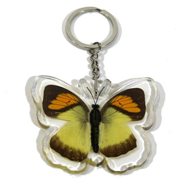 Ed Speldy East Company BTK107 Real Bug Yellow Orange Tip Butterfly Key Chain