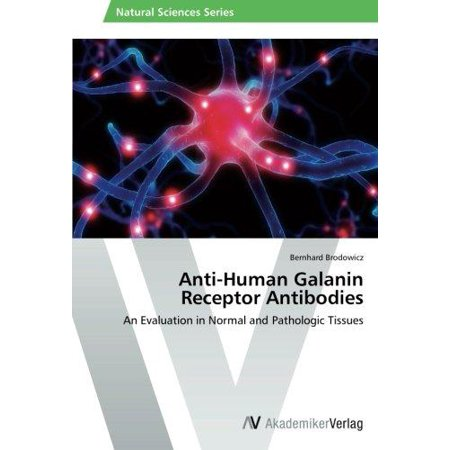 Anti Human Galanin Receptor Antibodies