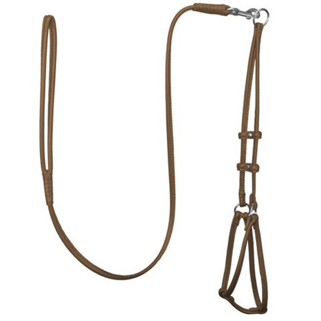 48 L x 0.25 W in. Round Leather Step-In Harness with Leash, Brown