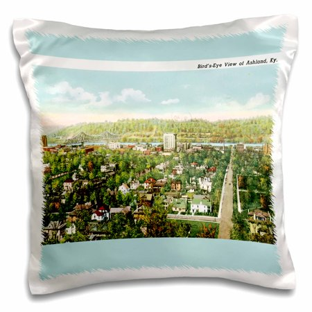 3dRose Birds Eye view of Ashland Kentucky Vintage Postcard - Pillow Case, 16 by