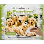"Junior Large Paint By Number Kit, 15.25"" x 11.25"", Golden Retriever"