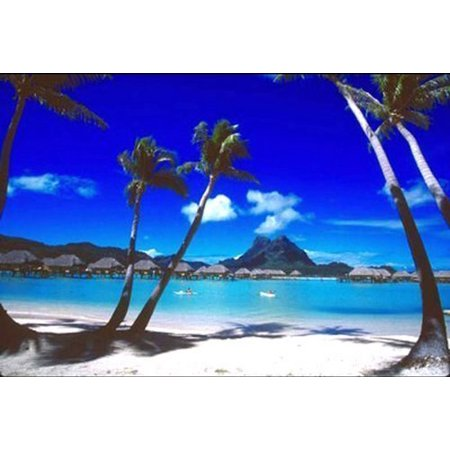 Tropical Palm Trees Bora Bora By Beverly Factor 36X24 Art Print Poster Beach Palm Trees Retreat Sand Ocean Vacation