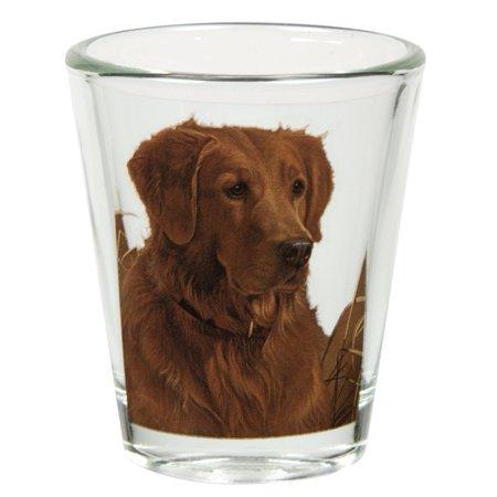 Golden Retriever Portrait Shot Glass, Animal Inspired Clothing By Animal World - Halloween Inspired Shots