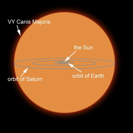 A Diagram Comparing The Sun To Vy Canis Majoris Canvas Art Ron