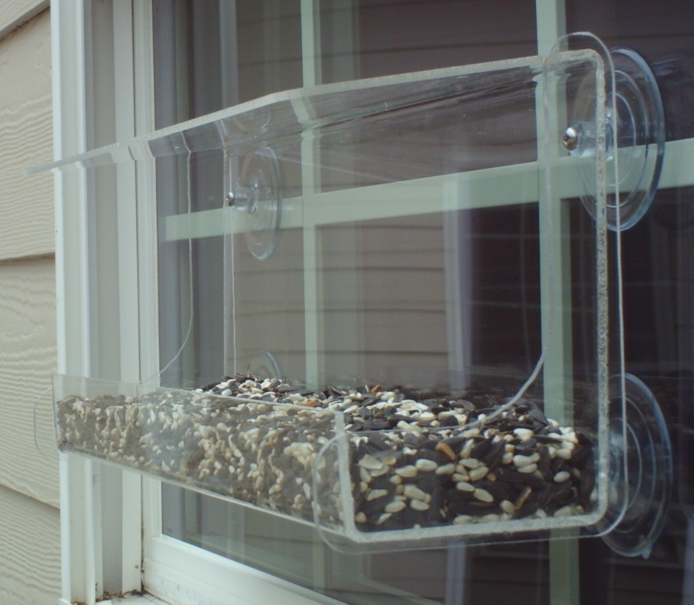 "Window Birdfeeder JCs Wildlife XX Lg Classic 15.5"" holds 5.5 cups Free Shipping by JCs Wildlife"