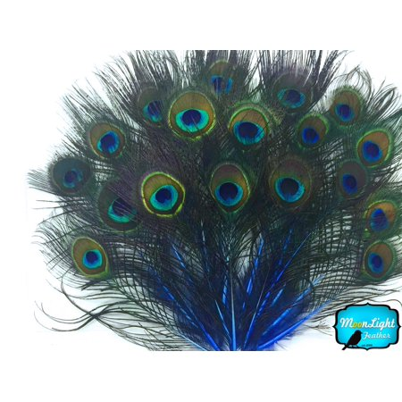 10 Pieces - Royal Blue Mini Natural Peacock Tail Body Feathers With Eyes Peacock Feathers Wedding