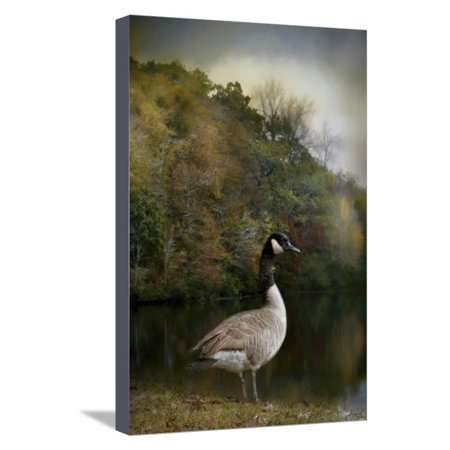 The Canadian Goose Stretched Canvas Print Wall Art By Jai Johnson