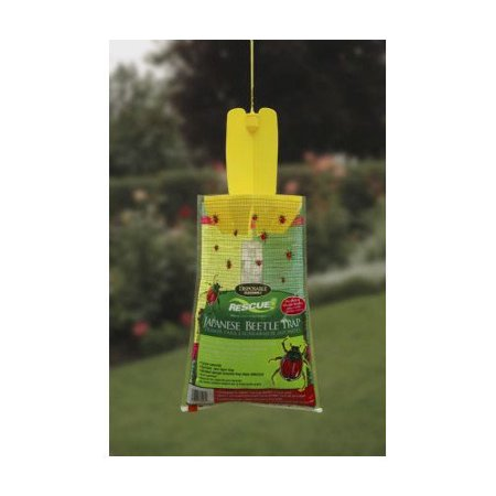 Rescue Oriental & Japanese Beetle Trap (Japanese Beetle Trap Display)