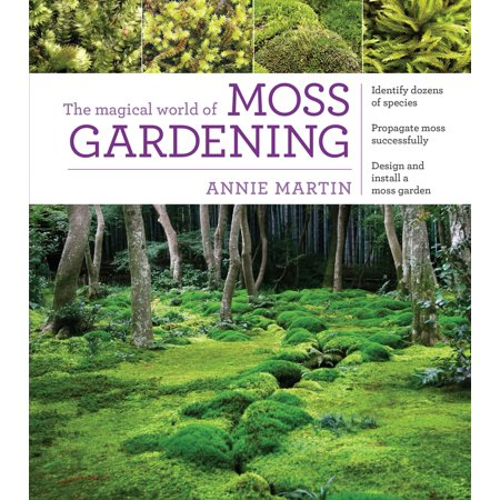 Magical World of Moss Gardening - Paperback (Most Mixed Race Person In The World)