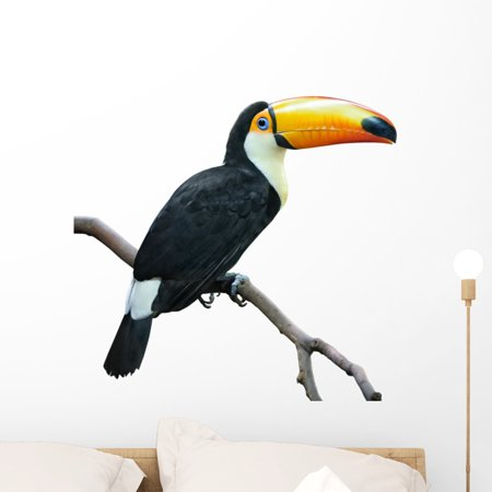 Toucan White Wall Decal by Wallmonkeys Peel and Stick Graphic 24 in W