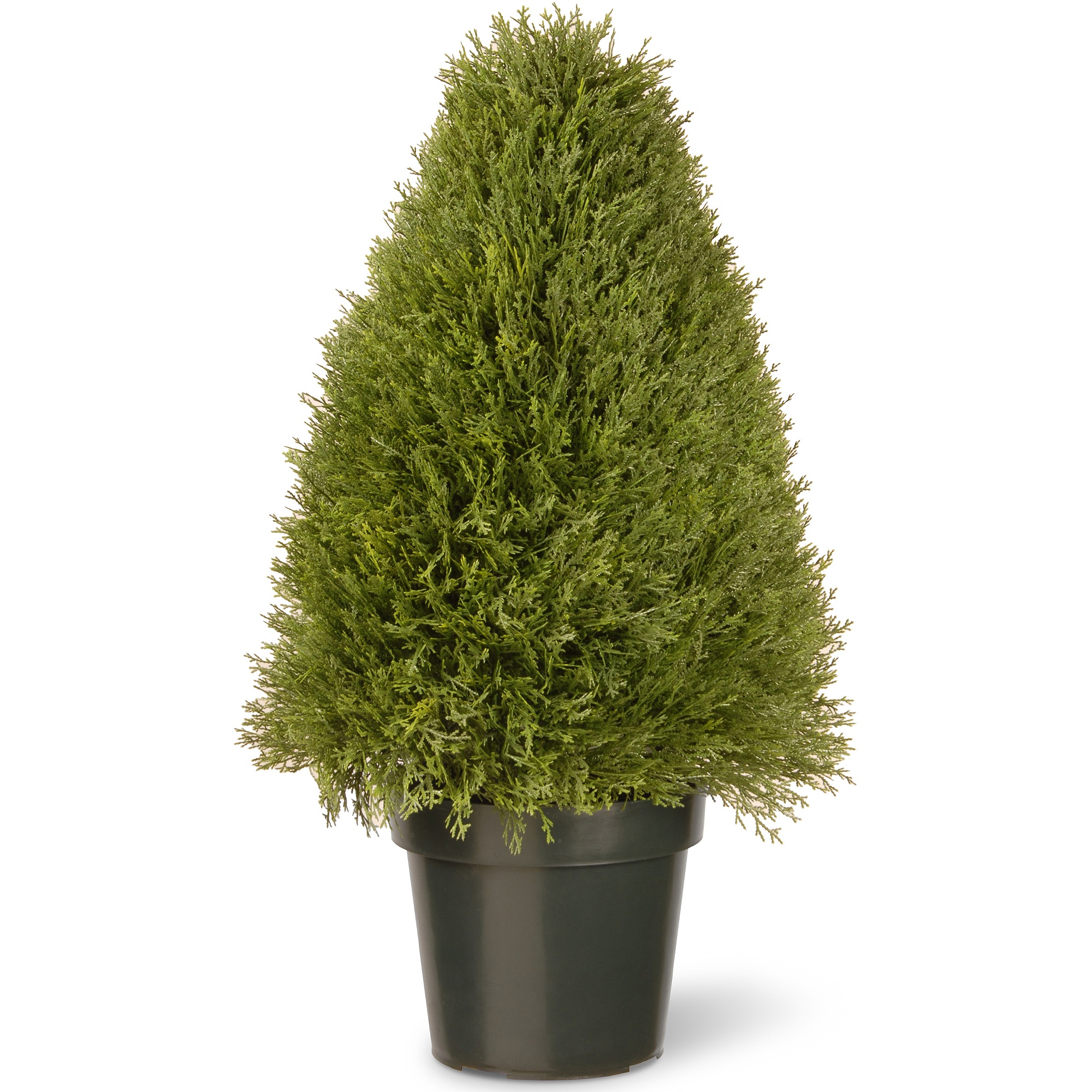 "National Tree 30"" Upright Juniper with Green Pot"