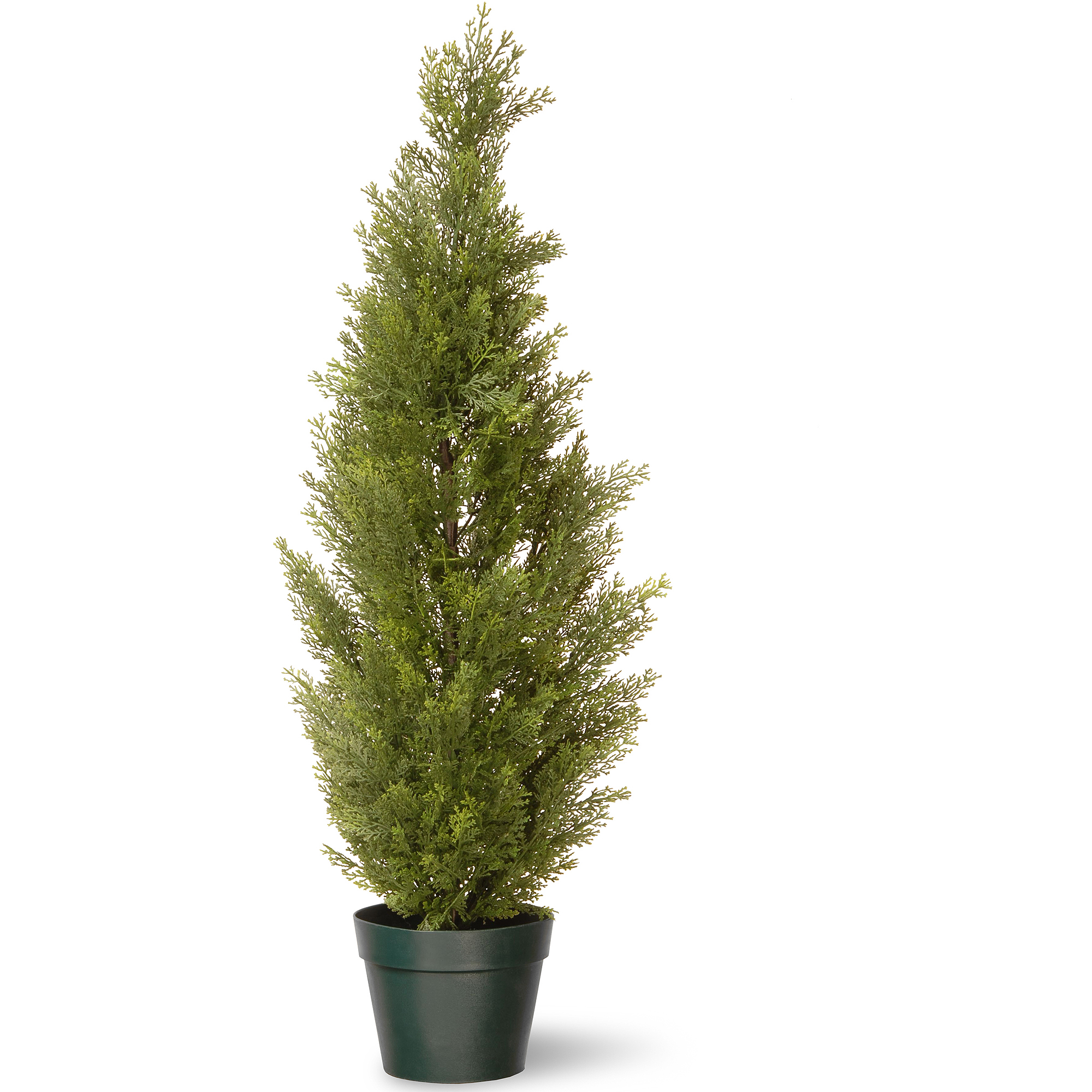 "National Tree 36"" Arborvitae with Green Pot"