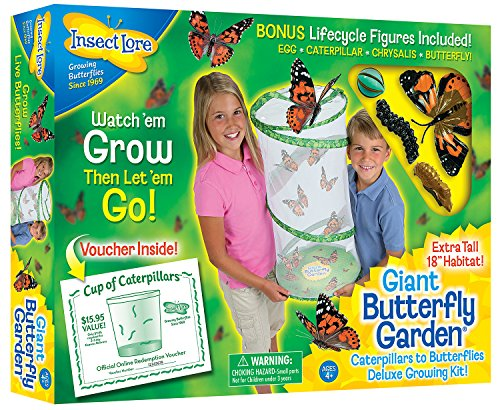 "Insect Lore Giant Butterfly Kit: Deluxe 18"" Habitat, Voucher For 5 Caterpillars, Butterfly Play Set by"