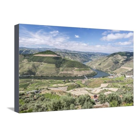 Portugal, Douro Valley, Douro River and Hillside Vineyard Stretched Canvas Print Wall Art By Rob (Douro Valley Portugal)