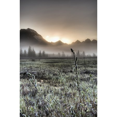 Morning Fog Hangs On The Ground Near The Copper River Highway As The Sun Rise Over The Chugach Mountains Chugach National Forest Southcentral Alaska Spring Hdr Canvas Art   Carl Johnson  Design Pics