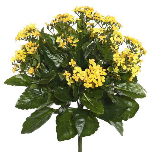 Charlton Home Polyester Kalanchoe Bush Floral Arrangement
