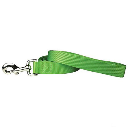Nylon Dog Leash 6ft x 1in Lime Zest