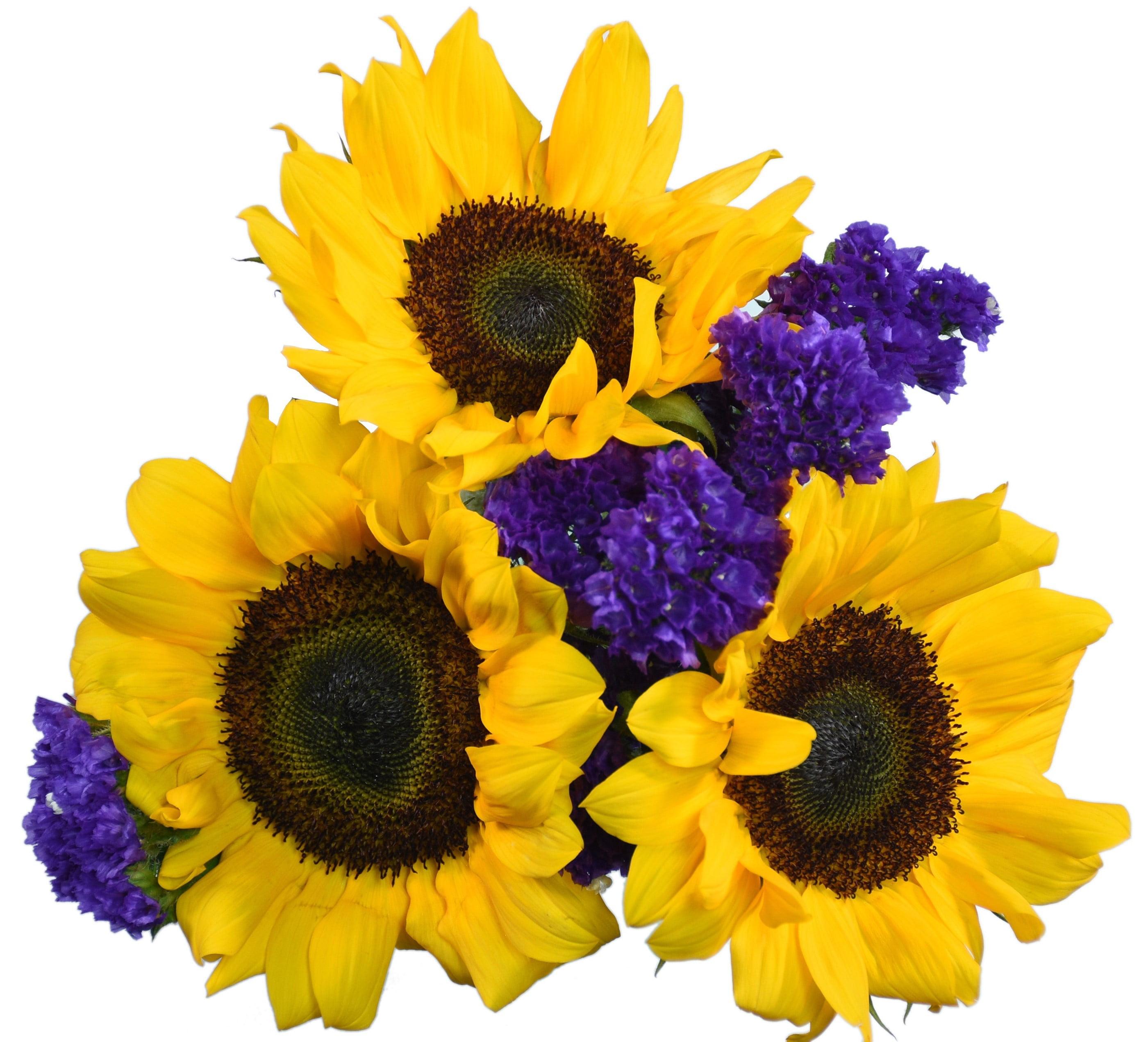 Sunflowers, 21 Stems