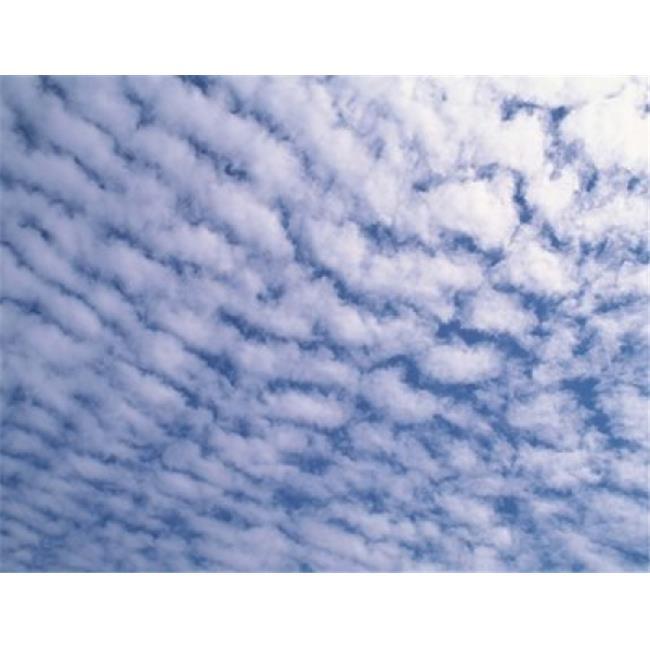 Cloudscape Poster Print by  - 24 x 19 - image 1 de 1