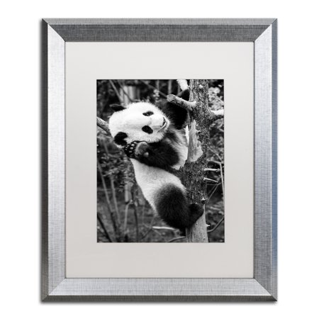 Trademark Fine Art \'Panda II\' Silver Framed Art by Philippe ...