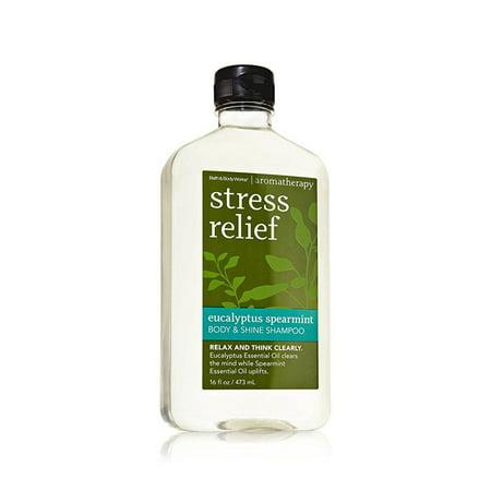 Eucalyptus Spa Bath (bath & body works true blue spa stress relief eucalyptus spearmint body & shine shampoo 16 fl oz)