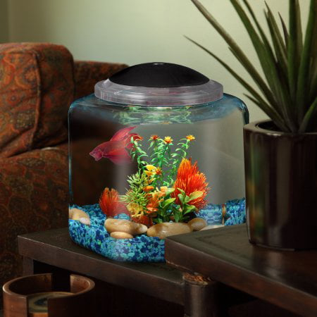 Hawkeye Betta Hex 1 Gal Aquarium Kit with LEDLights, Power Adapter, and Accent Gems!