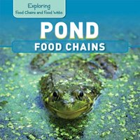 Pond Food Chains
