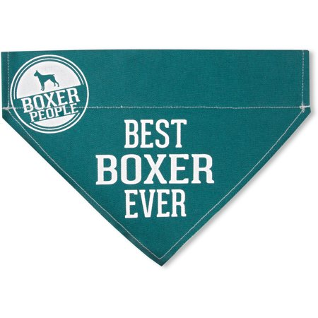 Pavilion - Best Boxer Ever - Teal Canvas Large Dog Bandana Collar - 12