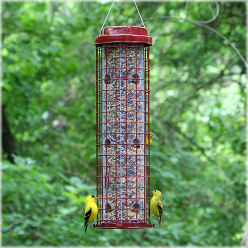 Perky Pet Easy Caged Tube Birdfeeder by WOODSTREAM CORP