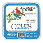 COLES WILD BIRD PRODUCTS INC BRSU 12OZ Blue Ribb Bend Suet